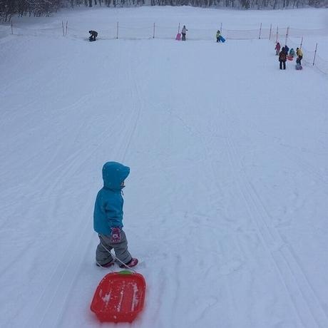 スキーの練習に!