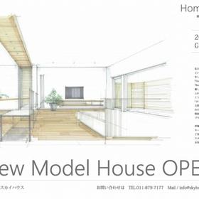 スカイハウスの新モデルが6月にオープンします