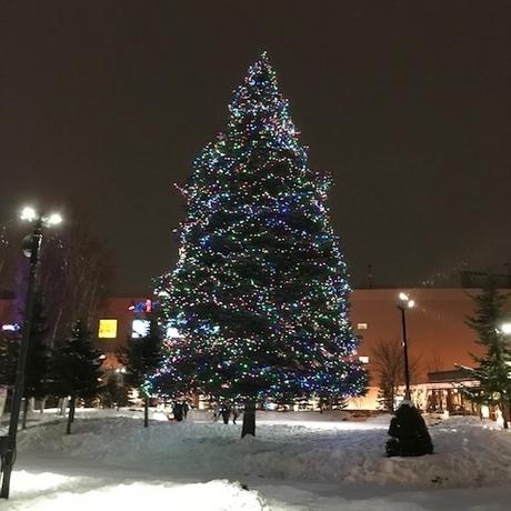 皆さんクリスマスはいかがお過ごしですか