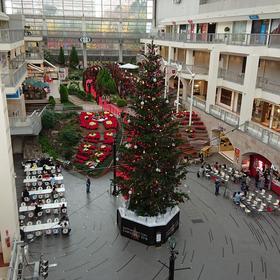 クリスマスツリー(^^)/