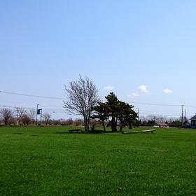札幌市内・近郊で『 運動会 』(^○^)