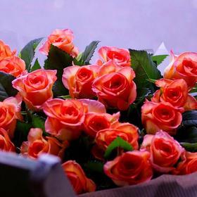 【 Flower shop 】にて① (^^)/